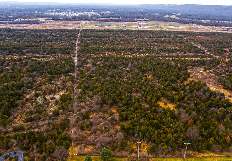 overhead view of trees at Belle Meade site